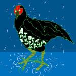 黒さつま鶏